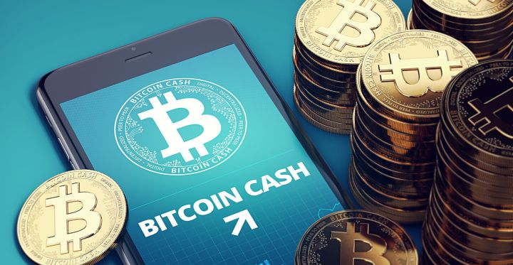 02_Smartphone-with-Bitcoin-Cash-growth-chart.jpg