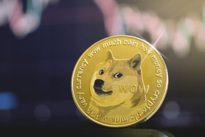 14_Dogecoin.png